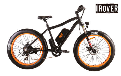 iRover US FJ-TDE07 1000W Bicycle